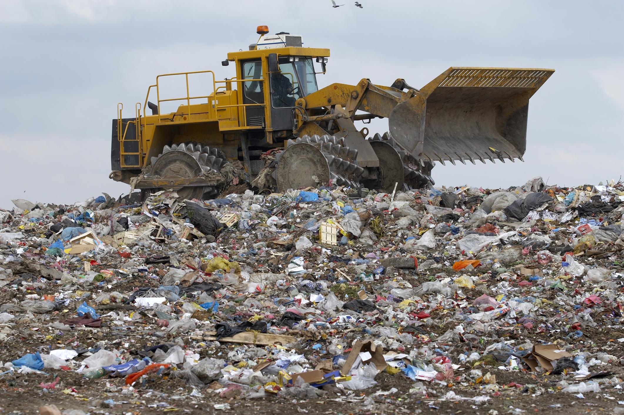 At the Landfill